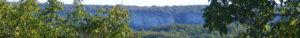 Lou Papagai cropped-DSCF3610-1.jpg