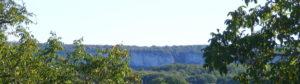 Lou Papagai cropped-DSCF3610-3.jpg